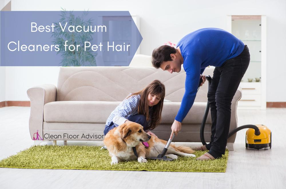 Our Suggestive Best Vacuum for Pet Hair