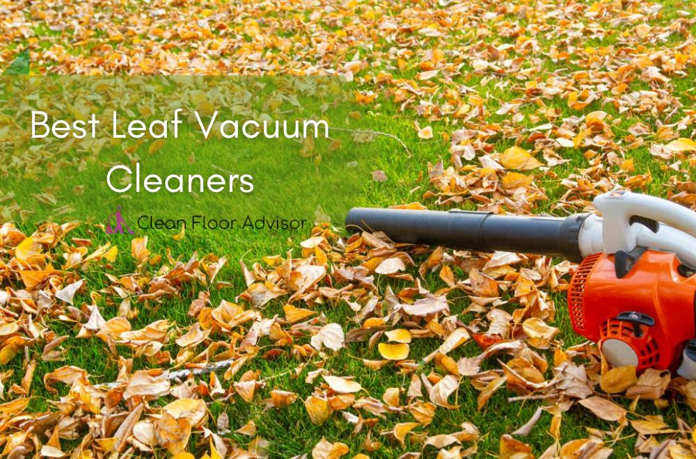 Reviews of Best Leaf Vacuum Cleaners